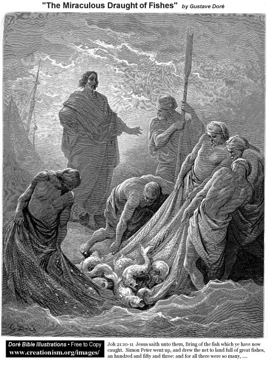 The risen Lord appears to Peter and others as they are fishing on the Sea of Tiberias. Jesus is standing on the beach. On the edge of the water are five men who are pulling a net with a large number of fishes in it.