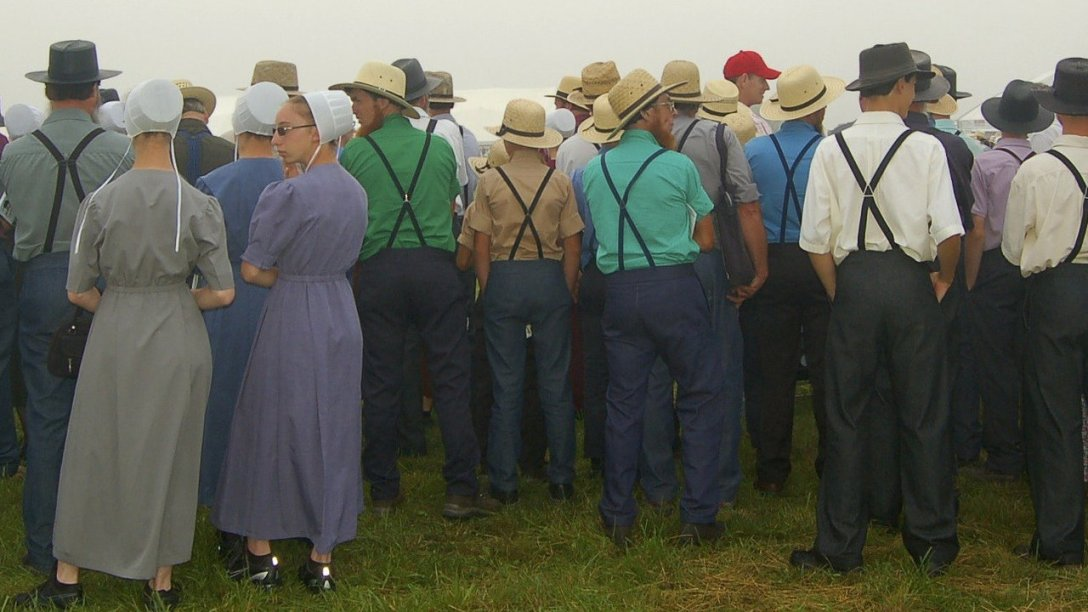 A group of Amish gathering together in the morning.