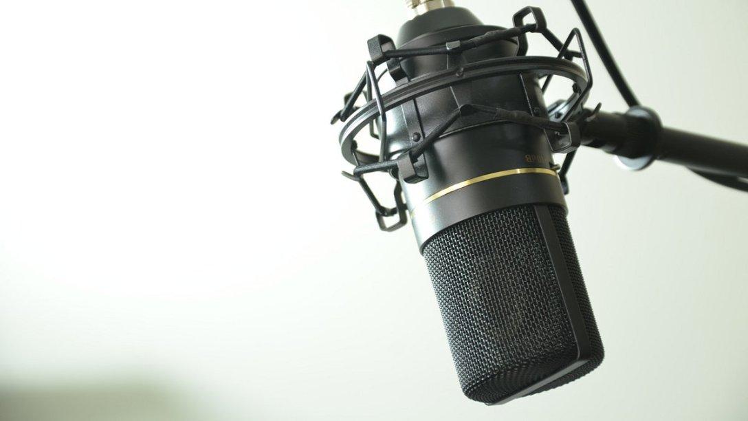 A condenser microphone.